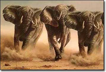 An Elephant Charge Or Ant Nest Orrin Woodward On Life